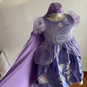 Disney Sofia costume for a girl